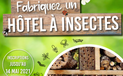 CONCOURS : Hôtel à insectes