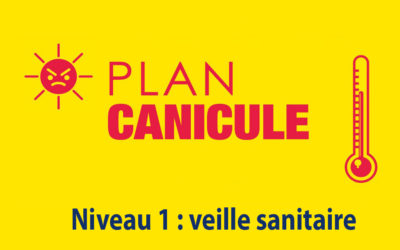 Plan Canicule : Veille sanitaire